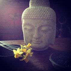 buddha, zen, coffee table - photo by apartmentf15