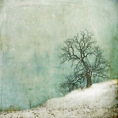 two flights up... by the lovely and talented, Jamie Heiden