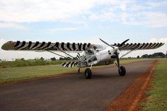 BushCat Light Sport Aircraft - Tailwheel Configuration Light Sport Aircraft, Airplanes, Fighter Jets, African, Sports, Hs Sports, Planes, Aircraft, Sport