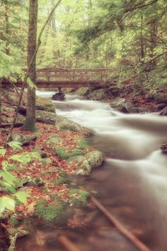 Mountain Stream - Woodstock, NY The Place to be! Artists, musicians, actors, actresses and the rich and famous love the Catskill's! Why aren't you here? Get your own! Call Upstate NY & Catskill's Real Estate & Land Expert. Kellie Place at Century 21 ~ 607-434-5263 www.century21upstatenewyork.com