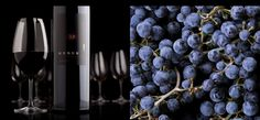 Merus Wines — Welcome Wine Photography, Wines, Backgrounds, Tours, Mood, Backdrops