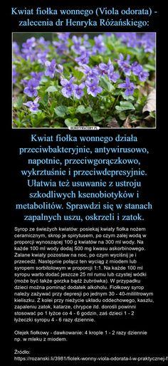 Herbs, Trends, Herb, Beauty Trends, Medicinal Plants