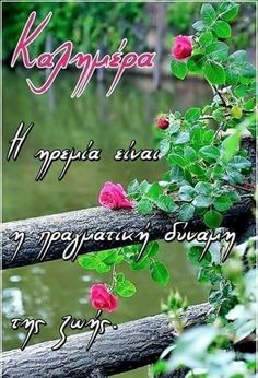 Good Morning Wishes, Greek Quotes, Plants, Facebook, Art, Art Background, Kunst, Plant, Performing Arts