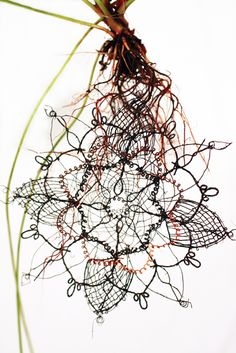 Biolace, a Design Research Project by Carole Collet, is a speculative design-led research project that investigates the intersection of synthetic biology and textile design to propose future fabrication processes for textiles.