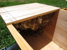 Charmant Here Is What Your DIY Top Bar Bee Hive Should Look Similar To When You Are  Finished. This Should Cost You Around $200 Dollars Total And Approx 6 Hou2026