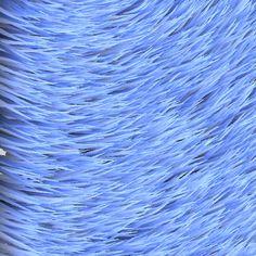 [texture] Blue fur