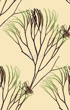 Seaweed Chaos 2