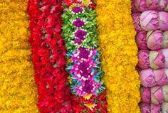 Indian Weddings Part 2! Flower Garlands