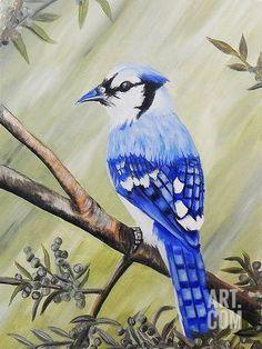 Blue Jay Giclee Print by Ed Capeau at Art.com