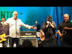 The Legendary Downchild Blues Band on June 2019 On Bloor Street at The Toronto Jazz Festival with Dan Ackroyd Jazz Festival, Blue Band, Try Again, Dan, Blues, Concert, People, Concerts, People Illustration