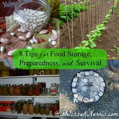8 Tips for Survival, Preparedness, and Food Storage  « Melissa K. Norris
