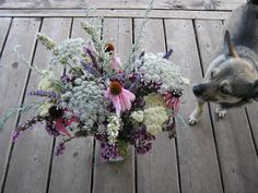 A fragrant herbal bouquet: Yarrow (Achillea nobilis), Echinacea pallida + Echinacea purpurea , Queen Anne's Lace (Daucus carota), Artemisia sp., Wood Betony (Stachys officinalis), Lavender (Lavandula x Grosso), Catmint (Nepeta cataria), Oregano vulgare hybrids, and Beebalm (Monarda fistulosa) flowers