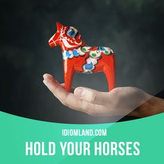 """""""Hold your horses"""" means """"slow down, wait"""". Example: Hold your horses! Grab an…"""