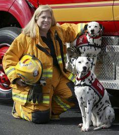 ▁▂▃▄❤❤♥ Fire Safety Dog