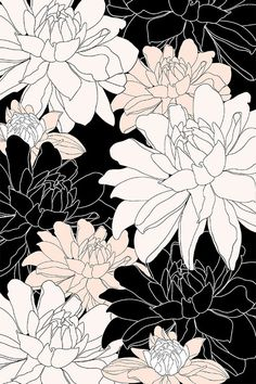 Black, white, and blush color way botanical floral illustration design by Alexandra Minkoff | www.alexandraminkoff.com | print design | patten | floral art |