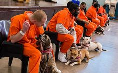 Going To Prison Was The Best Thing That Ever Happened To These Dogs. Here's Why. THESE PROGRAMS ARE AMAZING FOR ALL INVOLVED!