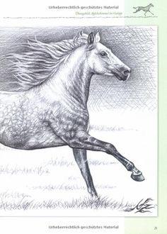 Zeichnen - Pferde: Ausdruck und Persönlichkeit Workshop: Amazon.de: Nicole Zeug: Bücher