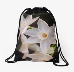 Paperwhites in the garden drawstring bag, cards, totes, smartphone covers and more! #photography #products #garden http://welchwrite.com/blog/2015/09/30/paperwhites-in-the-garden-drawstring-bag-cards-totes-smartphone-covers-and-more/#sthash.QucGXTA2.dpuf