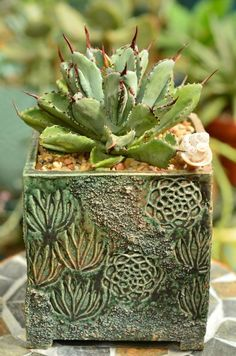Spring Collection Archives - Susan Aach Ceramics - Gorgeous handmade ceramic pottery for succulents. This has a spring green glaze and a botanic print - Ceramics Pottery Mugs, Pottery Pots, Ceramic Pottery, Thrown Pottery, Slab Pottery, Pottery Wheel, Ceramic Mugs, Ceramic Bowls, Cactus Ceramic