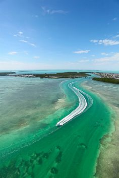 Snake Creek of Islamorada