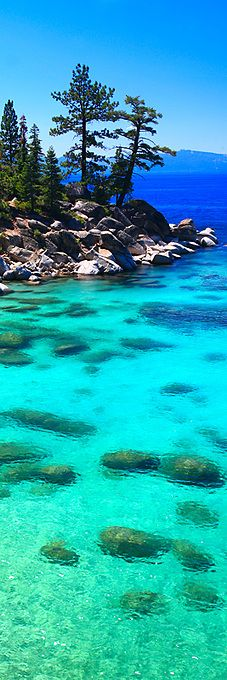 Would Love to go to a lake this clear! Crystal Cove ~ Lake Tahoe, Nevada by Jeffrey Murray Photography~~ Lago Tahoe, Dream Vacations, Vacation Spots, Vacation Travel, Places To Travel, Places To See, All Nature, Parcs, Places Around The World