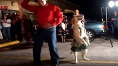 Gone Viral!  This Incredible Dog Really Dances The Merengue!