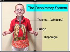 Screenshot of The Respiratory System ebook