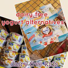Dairy Free Yogurt Alternatives