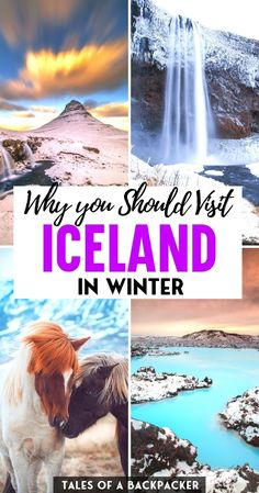 Iceland Travel Tips, Europe Travel Guide, Travel Abroad, Best Winter Vacations, Best Places To Vacation, Travel Goals, Travel Advice, Beautiful Places To Visit, Amazing Places