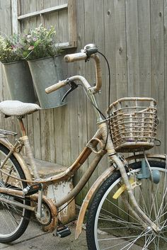 Vintage bike and galvanized  planters