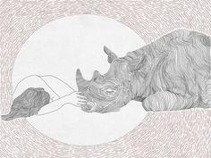 Friendship ,girl and rhino, line art, print of orginal drawing Creature Drawings, Animal Drawings, Art Drawings, Drawing Animals, Rhino Tattoo, Rhino Art, Most Beautiful Animals, Human Art, Cute Illustration