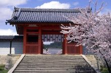 Ninna-ji Buddhist temple. I will never forget the night I spent here and the morning prayers.