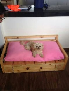 cama de perro con cajon