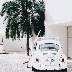 Surfing holidays is a surfing vlog with instructional surf videos, fails and big waves Beach Aesthetic, Summer Aesthetic, White Aesthetic, Kitesurfing, Alana Blanchard, Photo Vintage, High Cut Bikini, Jolie Photo, Vw Beetles
