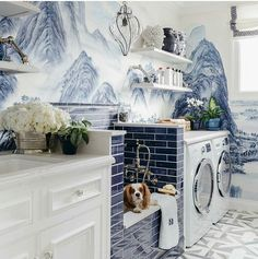 """natashakalitadesign: """"A classic blue and white laundry room complete with doggie bath at the San Francisco Decorator Showcase. So sweet!  Designed by @dinabandmaninteriors @build_prestige_homes  by..."""