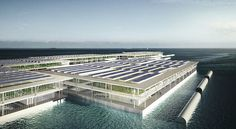 Can Solar Powered Floating Farms Provide Power For The World? | CE / by Alanna Ketler