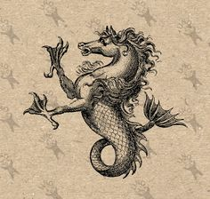 Sea Horse - Book of Heraldry Mythological Creatures, Mythical Creatures, Engraving Illustration, Illustration Art, Merian, Occult Art, Medieval Art, Medieval Pattern, Sea Monsters