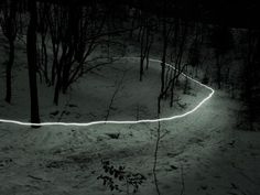 Creative Land, Scapes, Behance, Network, and Forest image ideas & inspiration on Designspiration Light Trails, Long Exposure, Light Painting, Light Art, Photos, Pictures, Marvel Cinematic Universe, Landscape Photography, Forest Photography