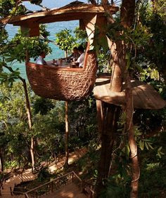 Treepod restaurant in Koh Kood, Thailand at Soneva Kiri resort - after being seated your pod is hoisted over 20' into a huge massang tree.  Waiters zipline to you.