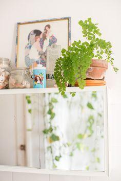 Little Nicki's Plantastic Picks: 4 plants for the bathroom.