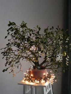 Stroik z jemioły  Autor: Kaziow.Krystyna  #QSQ #Christmas #tree #ornament #inspiration #idea #decor #mistletoe #lights #fairy