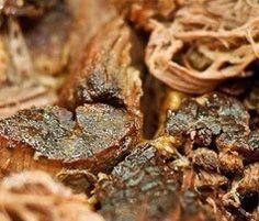 Low Sodium BBQ Pork