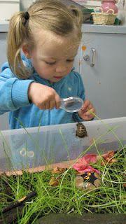 Snail Garden-designed by children....