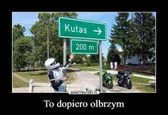 To dopiero olbrzym – Wtf Funny, Funny Memes, Hilarious, Jokes, Black Joker, Polish Memes, Everything And Nothing, Read News, Man Humor