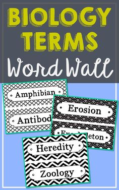 Biology Science Vocabulary Word Wall. Each of the 106 Biology terms has been created in black and white for super easy printing. It's easy to make them stand out with your choice of colored paper. So many uses for these!