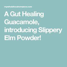 A Gut Healing Guacamole, introducing Slippery Elm Powder!