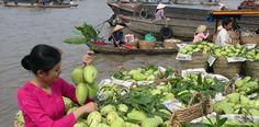 Tour Sài Gòn - Cần Thơ - Du Ngoạn Bến Ninh Kiều, Cầu Treo Cần Thơ Mỹ Thuận 2N1D