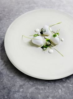 The Nordic Star Chef from Copenhagen creates a scallops dish with a horseradish gel.