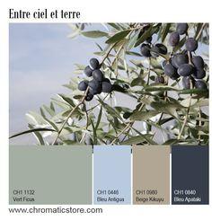 Cette palette de tons froids dominés par le Vert Ficus s'adapte aussi bien à une déco traditionnelle qu'à un design contemporain. www.chromaticstore.com
