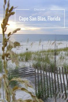 Things to do in beautiful Cape San Blas, Florida